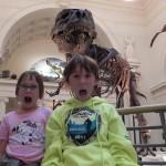 Field Museum - Dino